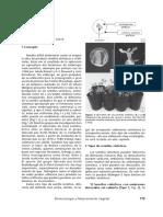 150416.pdf