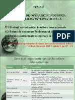 Tema 5 Hotelaria Internaţională