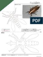 Cicada.pdf