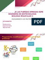 Plegamientos de proteinas