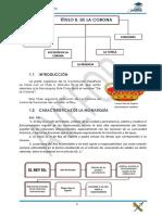 Tema Constitución Española
