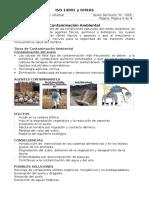 Contaminación Ambiental d1.docx
