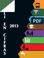 Cali en cifras 2013