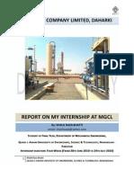 Internship Report MGCL