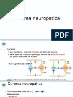 durerea neuropatica.pptx