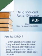 PPT Drug Induced Renal Deases