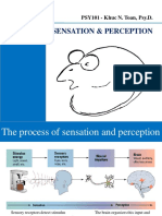 Class2_Sensation_Perception.pdf