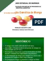 DESIDRATAÇÃO OSMÓTICA DE MANGA - apresentação