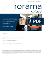 Analiza+Transportatorilor+din+Romania.pdf