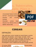 cereaispartlarissa1-160503005717 (1).pptx