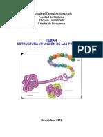 Tema 4 - Estructura de Las Proteínas