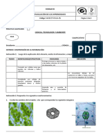 prcticatejidosvegetales-140616220753-phpapp01.pdf