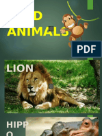61860_the_zoo