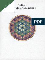 manual oficial merkaba.pdf