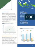 2013-Asia_Pacific_Audit-Indonesia_0_0.pdf