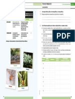 Ficha CN_OJ.pdf