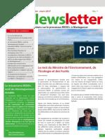 Newsletter N1