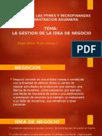 Estudio de Las Pymes y Microfinanzas 1