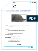 Imprimir Informe Leon Dormido-2
