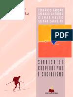 Ricardo Antunes, Fernando Haddad, Gilmar Mauro & Gilmar Carneiro  - Sindicatos, cooperativas e socialismo.pdf