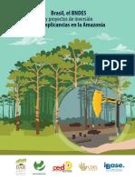 Brasil, el BANDES y proyectos de inversión conm implicancias en la Amazonía.pdf