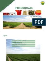 Cadenas Productivas - Campo Sol