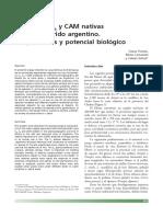 passera.pdf