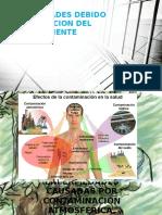 ENFERMEDADES DEBIDO A DEGRADACION DEL MEDIO AMBIENTE.pptx