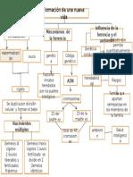 mapa de infancia juli.pptx