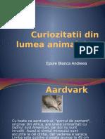 CURIOZITATI DIN LUMEA ANIMALELOR.pptx