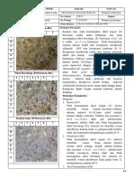 DESKRIPSI PETROGRAFI STA 7.pdf