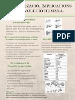 Encefalització-Poster.pdf