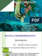 1 biorremedacion