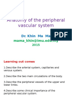 Anatomy of the Peripheral Vascular System -2