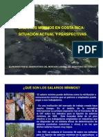 SALARIOSMINIMOSENCOSTARICASITUACIONACTUALYPERSPECTIVASVERSIONFINAL[1]
