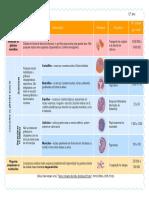 esquema_imunidade.pdf