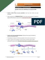 informativa 3 operoes.pdf