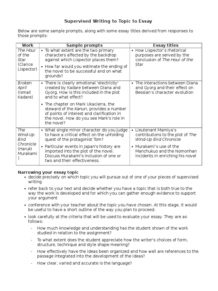 essay on student and politics