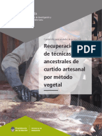 curtidoArtesanal_vegetal.pdf
