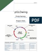 PPU PVA versie 4.docx