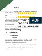 CHOIX MODES DE DVPT FINAL.docx