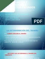 Formulacion de Proyectos Sappag Cap 8 y 9