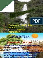 ecosistemas.ppt_2