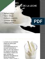 alteracionesmicrobiolgicasdelaleche-110407180941-phpapp02.pptx