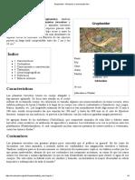 Geoplanidae - Wikipedia, La Enciclopedia Libre