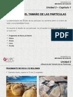 2.1 Influencia Del Tamaño de Las Partículas (MSD)