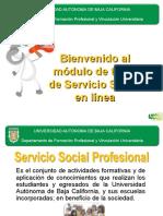Taller de Induccion a SSP.pdf