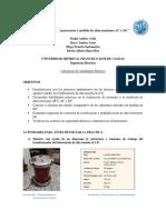 Preinforme-2-3