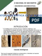 derivados -presentación