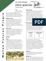 Local Native Species - Revegetatin Fact Sheet